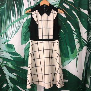 New Loft Black Cream Plaid Collared Shirt Dress 4